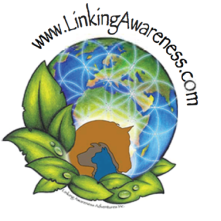 Linking Awareness Class Singapore 2015